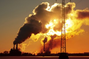 Verunreinigung- Vergiftung unserer Lebensmittel mit Pestiziden, Insektiziden und Fungiziden